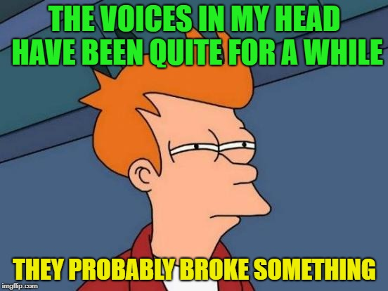 Shhhh Listen |  THE VOICES IN MY HEAD HAVE BEEN QUITE FOR A WHILE; THEY PROBABLY BROKE SOMETHING | image tagged in memes,futurama fry,funny,voices,silence | made w/ Imgflip meme maker