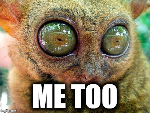 big eyes | ME TOO | image tagged in big eyes | made w/ Imgflip meme maker
