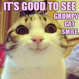 IT'S GOOD TO SEE GRUMPY CAT SMILE. | made w/ Imgflip meme maker