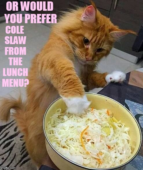 OR WOULD YOU PREFER COLE SLAW FROM THE LUNCH MENU? | made w/ Imgflip meme maker