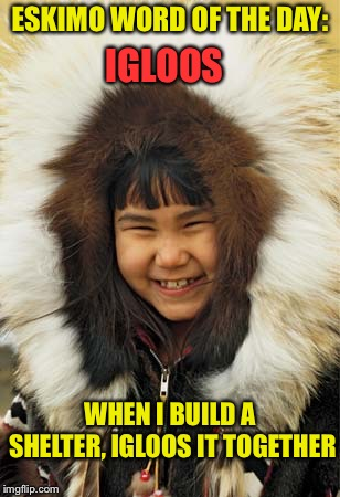 The more you know. | ESKIMO WORD OF THE DAY: IGLOOS WHEN I BUILD A SHELTER, IGLOOS IT TOGETHER | image tagged in eskimo,joke,memes,funny | made w/ Imgflip meme maker