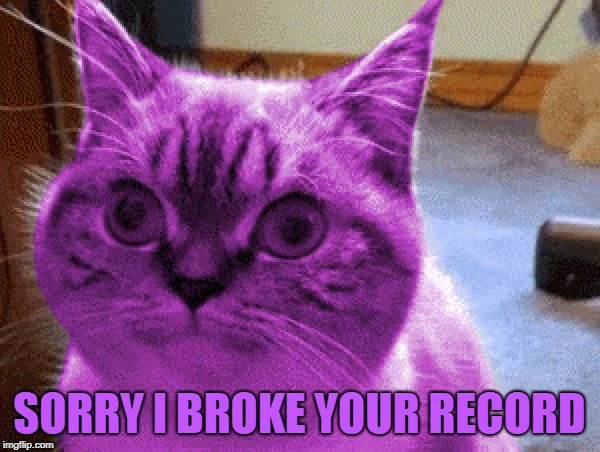 RayCat derp | SORRY I BROKE YOUR RECORD | image tagged in raycat derp | made w/ Imgflip meme maker