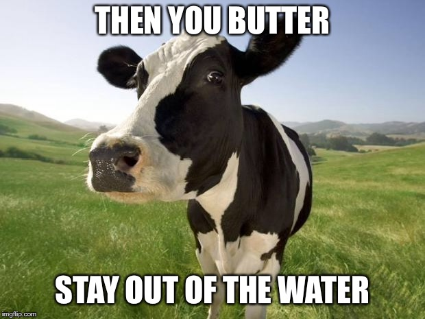 cow | THEN YOU BUTTER STAY OUT OF THE WATER | image tagged in cow | made w/ Imgflip meme maker