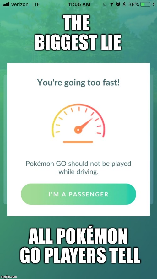 Things we do but shouldn't. | THE BIGGEST LIE ALL POKÉMON GO PLAYERS TELL | image tagged in pokemon go,pokemon,lies,video games,don't text and drive | made w/ Imgflip meme maker