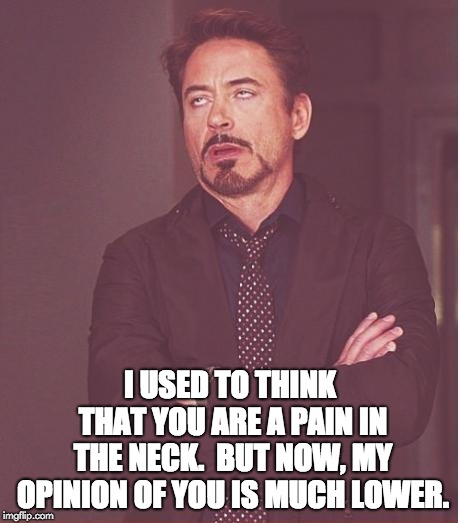 Face You Make Robert Downey Jr Meme | I USED TO THINK THAT YOU ARE A PAIN IN THE NECK.  BUT NOW, MY OPINION OF YOU IS MUCH LOWER. | image tagged in memes,face you make robert downey jr | made w/ Imgflip meme maker