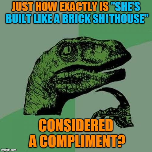 "Not Sure If Good Construction or Bad Construction. Bad Construction Week: a DrSarcasm Event Oct. 1-7. | JUST HOW EXACTLY IS ""SHE'S BUILT LIKE A BRICK SH THOUSE"" CONSIDERED A COMPLIMENT? JUST HOW EXACTLY IS ¡ 
