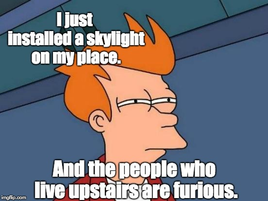 Futurama Fry Meme | I just installed a skylight on my place. And the people who live upstairs are furious. | image tagged in memes,futurama fry | made w/ Imgflip meme maker