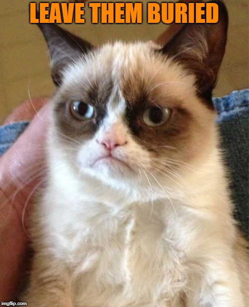 Grumpy Cat Meme | LEAVE THEM BURIED | image tagged in memes,grumpy cat | made w/ Imgflip meme maker