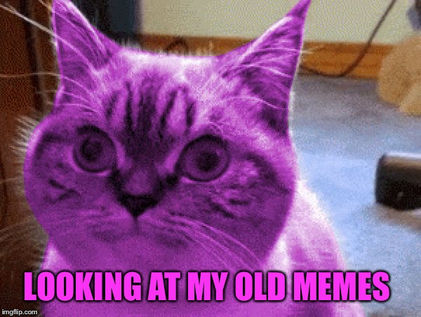 LOOKING AT MY OLD MEMES | image tagged in raycat derp,memes | made w/ Imgflip meme maker