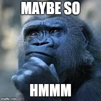 Thinking ape | MAYBE SO HMMM | image tagged in thinking ape | made w/ Imgflip meme maker