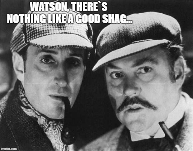 sherlock holmes | WATSON, THERE`S NOTHING LIKE A GOOD SHAG... | image tagged in sherlock holmes | made w/ Imgflip meme maker