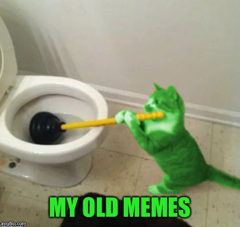 RayCat's toilet | MY OLD MEMES | image tagged in raycat's toilet | made w/ Imgflip meme maker