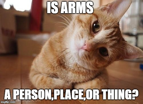 Curious Question Cat | IS ARMS A PERSON,PLACE,OR THING? | image tagged in curious question cat | made w/ Imgflip meme maker