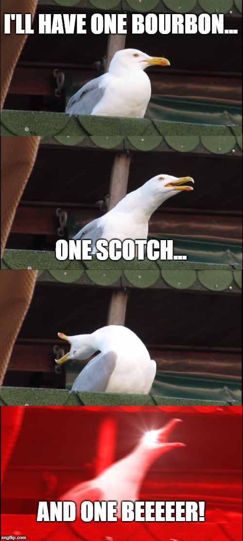 ...tell you a story... | I'LL HAVE ONE BOURBON... ONE SCOTCH... AND ONE BEEEEER! | image tagged in memes,inhaling seagull,george thorogood,one bourbon one scotch and one beer | made w/ Imgflip meme maker