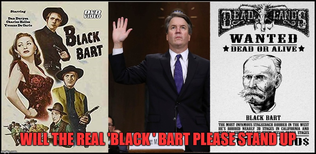 Are you the Bart refered to in Mark Judge's book | WILL THE REAL 'BLACK ' BART PLEASE STAND UP | image tagged in brett kavanaugh,kavanaugh,drunk | made w/ Imgflip meme maker