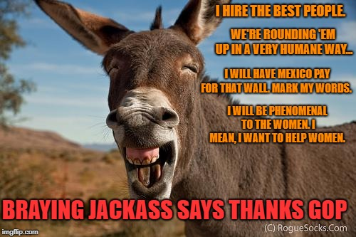 """Braying Jackass"" Thanks the GOP 
