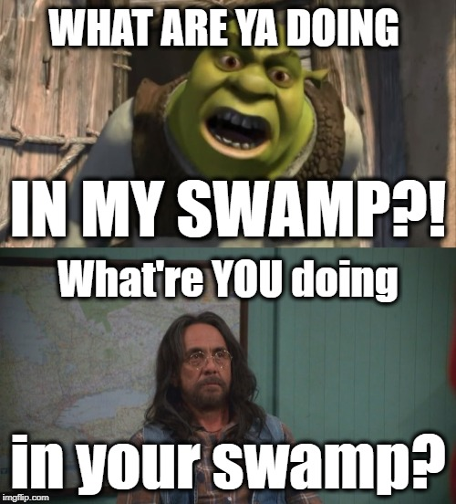 Shrek vs. Leo | WHAT ARE YA DOING IN MY SWAMP?! What're YOU doing in your swamp? | image tagged in shrek,what are you doing in my swamp,what are you doing in canada,leo,tommy chong,that 70's show | made w/ Imgflip meme maker