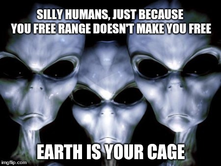 Angry aliens |  SILLY HUMANS, JUST BECAUSE YOU FREE RANGE DOESN'T MAKE YOU FREE; EARTH IS YOUR CAGE | image tagged in angry aliens | made w/ Imgflip meme maker