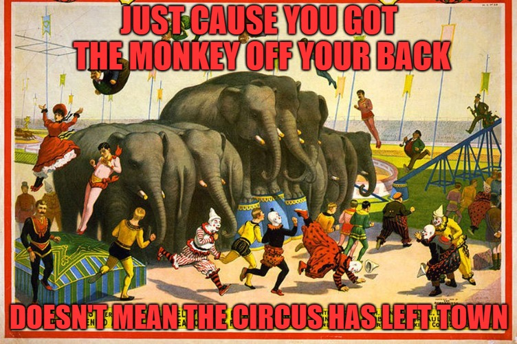 JUST CAUSE YOU GOT THE MONKEY OFF YOUR BACK DOESN'T MEAN THE CIRCUS HAS LEFT TOWN | image tagged in drug addiction,buprinorphine,highland hospital er | made w/ Imgflip meme maker