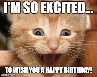 Excited Cat | I'M SO EXCITED... TO WISH YOU A HAPPY BIRTHDAY! | image tagged in memes,excited cat | made w/ Imgflip meme maker