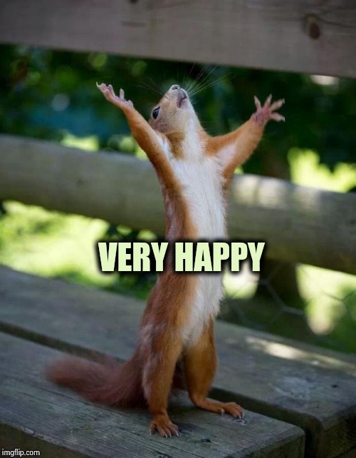 Happy Squirrel | VERY HAPPY | image tagged in happy squirrel | made w/ Imgflip meme maker