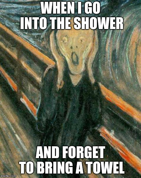 The Scream | WHEN I GO INTO THE SHOWER AND FORGET TO BRING A TOWEL | image tagged in the scream | made w/ Imgflip meme maker