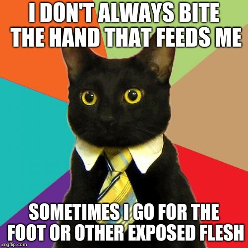 Business Cat | I DON'T ALWAYS BITE THE HAND THAT FEEDS ME SOMETIMES I GO FOR THE FOOT OR OTHER EXPOSED FLESH | image tagged in memes,business cat | made w/ Imgflip meme maker