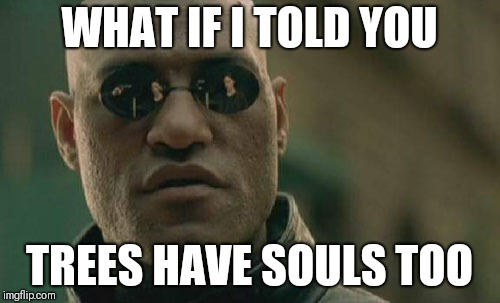 Matrix Morpheus Meme | WHAT IF I TOLD YOU TREES HAVE SOULS TOO | image tagged in memes,matrix morpheus | made w/ Imgflip meme maker