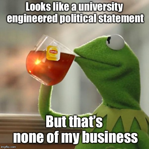 But Thats None Of My Business Meme | Looks like a university engineered political statement But that's none of my business | image tagged in memes,but thats none of my business,kermit the frog | made w/ Imgflip meme maker
