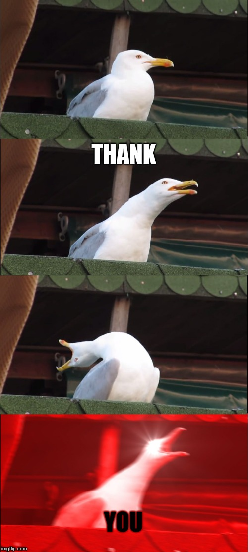Inhaling Seagull Meme | THANK YOU | image tagged in memes,inhaling seagull | made w/ Imgflip meme maker