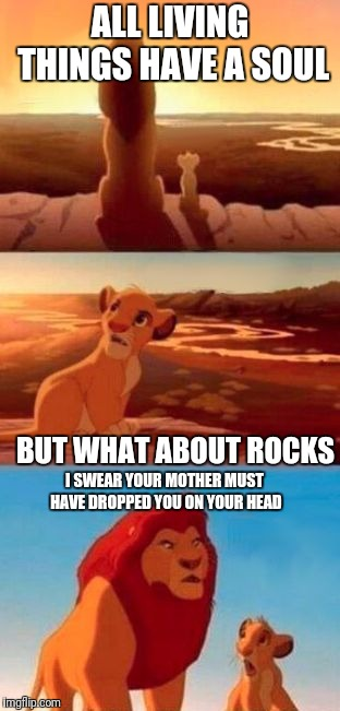 simba |  ALL LIVING THINGS HAVE A SOUL; BUT WHAT ABOUT ROCKS; I SWEAR YOUR MOTHER MUST HAVE DROPPED YOU ON YOUR HEAD | image tagged in simba | made w/ Imgflip meme maker