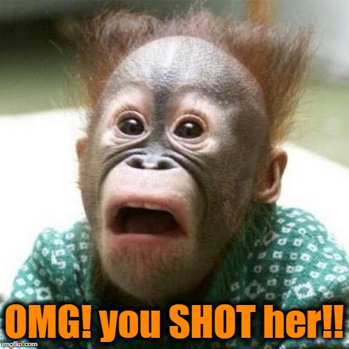Shocked Monkey | OMG! you SHOT her!! | image tagged in shocked monkey | made w/ Imgflip meme maker