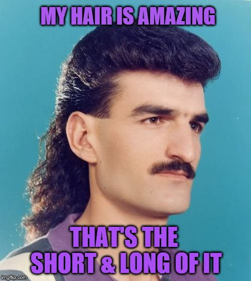 Bad Pun Mull-stache Guy | MY HAIR IS AMAZING THAT'S THE SHORT & LONG OF IT | image tagged in mullet,bad pun | made w/ Imgflip meme maker