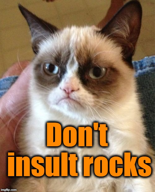 Grumpy Cat Meme | Don't insult rocks | image tagged in memes,grumpy cat | made w/ Imgflip meme maker