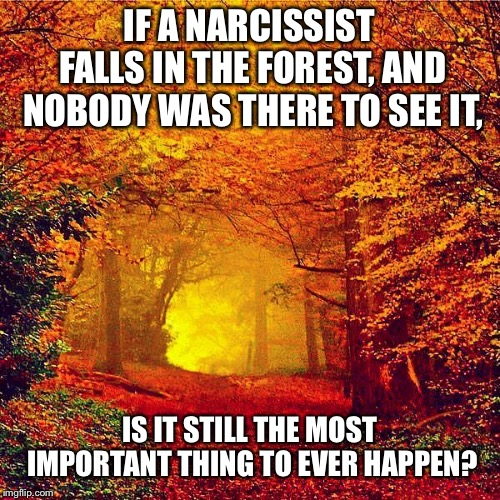 Autumn walk | IF A NARCISSIST FALLS IN THE FOREST, AND NOBODY WAS THERE TO SEE IT, IS IT STILL THE MOST IMPORTANT THING TO EVER HAPPEN? | image tagged in autumn walk | made w/ Imgflip meme maker