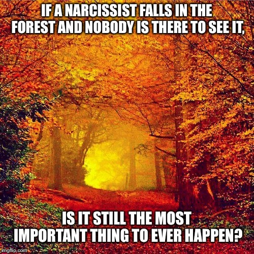 Autumn walk | IF A NARCISSIST FALLS IN THE FOREST AND NOBODY IS THERE TO SEE IT, IS IT STILL THE MOST IMPORTANT THING TO EVER HAPPEN? | image tagged in autumn walk | made w/ Imgflip meme maker