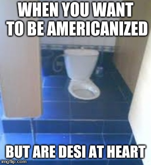 Here's a bad construction week meme I didn't submit earlier |  WHEN YOU WANT TO BE AMERICANIZED; BUT ARE DESI AT HEART | image tagged in toilet,indian memes,desi memes,immigrants,bad construction week | made w/ Imgflip meme maker