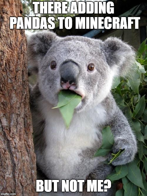 Surprised Koala | THERE ADDING PANDAS TO MINECRAFT BUT NOT ME? | image tagged in memes,surprised koala | made w/ Imgflip meme maker