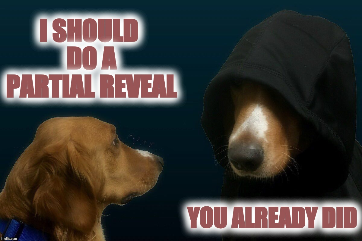 Evil dog | I SHOULD DO A PARTIAL REVEAL YOU ALREADY DID | image tagged in evil dog | made w/ Imgflip meme maker