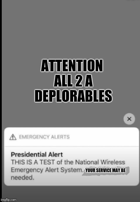 Phase 1  |  ATTENTION ALL 2 A DEPLORABLES; YOUR SERVICE MAY BE | image tagged in 2a,deplorables | made w/ Imgflip meme maker