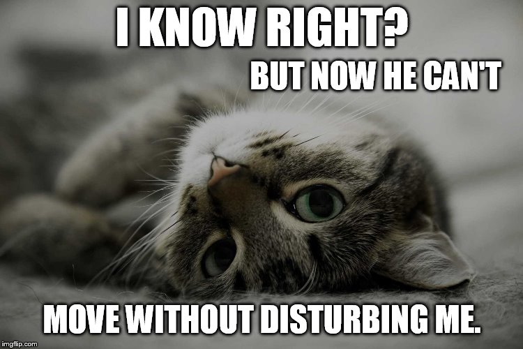 I KNOW RIGHT? MOVE WITHOUT DISTURBING ME. BUT NOW HE CAN'T | made w/ Imgflip meme maker