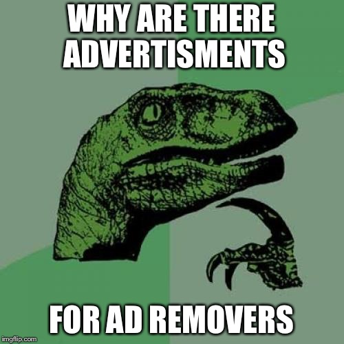 Seems kind of ironic, doesn't it? | WHY ARE THERE ADVERTISMENTS FOR AD REMOVERS | image tagged in memes,philosoraptor,irony,advertisement | made w/ Imgflip meme maker