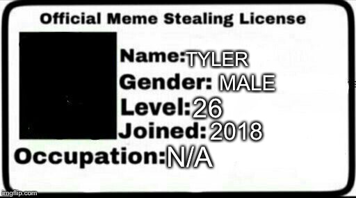 Meme Stealing License | TYLER MALE 26 2018 N/A | image tagged in meme stealing license | made w/ Imgflip meme maker