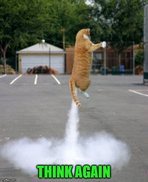 Rocket cat | THINK AGAIN | image tagged in rocket cat | made w/ Imgflip meme maker