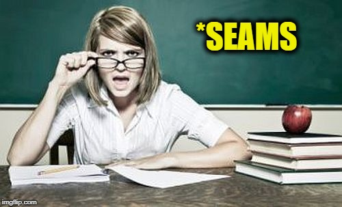 teacher | *SEAMS | image tagged in teacher | made w/ Imgflip meme maker