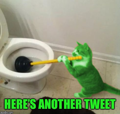 RayCat's toilet | HERE'S ANOTHER TWEET | image tagged in raycat's toilet | made w/ Imgflip meme maker