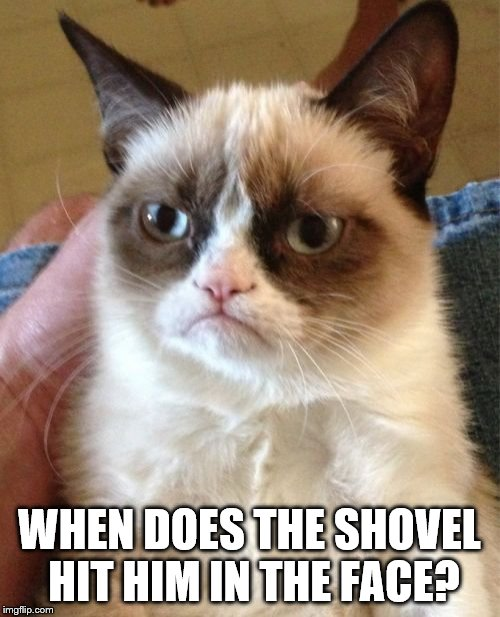 Grumpy Cat Meme | WHEN DOES THE SHOVEL HIT HIM IN THE FACE? | image tagged in memes,grumpy cat | made w/ Imgflip meme maker