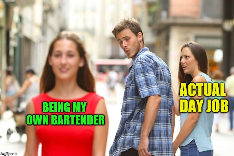 Distracted Boyfriend Meme | BEING MY OWN BARTENDER ACTUAL DAY JOB | image tagged in memes,distracted boyfriend | made w/ Imgflip meme maker