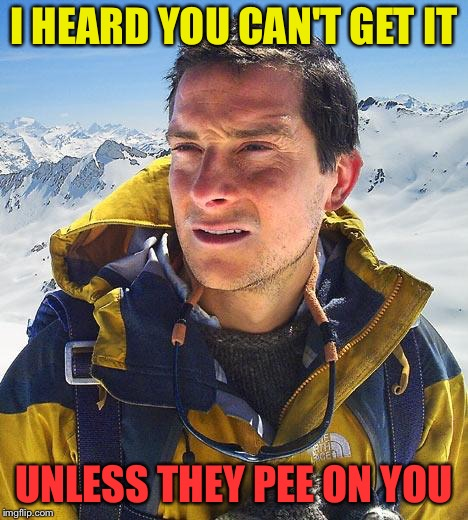 Bear Grylls Meme | I HEARD YOU CAN'T GET IT UNLESS THEY PEE ON YOU | image tagged in memes,bear grylls | made w/ Imgflip meme maker