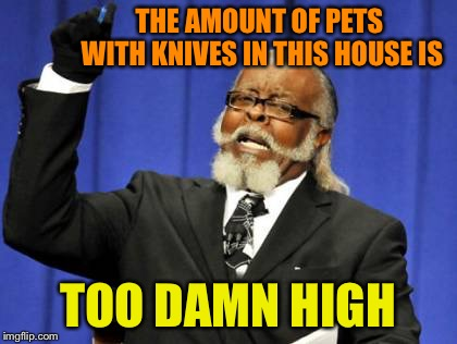 Too Damn High Meme | THE AMOUNT OF PETS WITH KNIVES IN THIS HOUSE IS TOO DAMN HIGH | image tagged in memes,too damn high | made w/ Imgflip meme maker